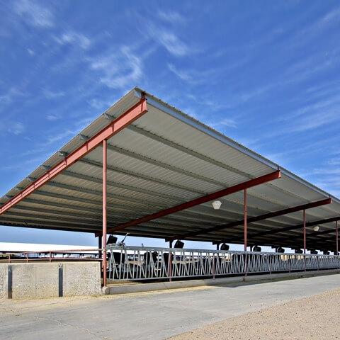 Kibbler Dairy custom steel agriculture building | Bunger Steel