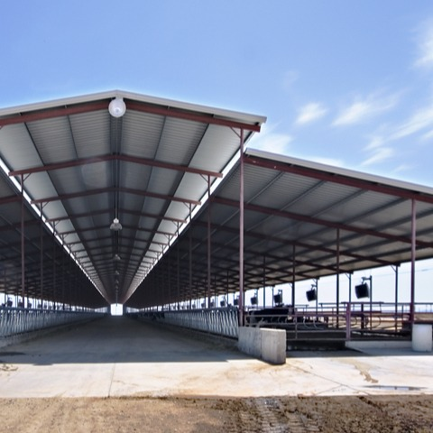McClintock Dairy steel agriculture building | Bunger Steel